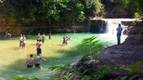 Ultimate Los Haitises Eco Tourism Adventure with Yanigua SPA, Punta Cana, Day Trips