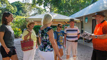 Walk the Darwin Botanic Gardens, Darwin, Walking Tours