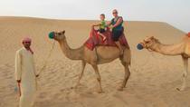 Dubai Morning Desert Small-Group Tour with Dune Bash