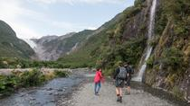 Franz Josef Glacier Valley Eco Tour, Franz Josef & Fox Glacier, Eco Tours