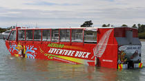 Auckland Duck Tour, Auckland, Duck Tours