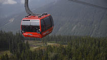 Summer Tour: Whistler and Shannon Falls All-Day Tour from Vancouver