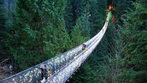 Vancouver City and Capilano Suspension Bridge Canyon Lights Tour, Vancouver, Bike & Mountain Bike ...