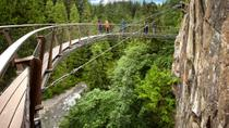 Vancouver Shore Excursion: City Tour and Capilano Suspension Bridge, Vancouver, Full-day Tours