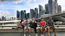 Private Customised Singapore Airport Layover Tour By Car, Singapore, Layover Tours