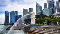 Private Singapore Airport Layover Walking Tour, Singapore, Hop-on Hop-off Tours