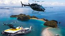 Bay of Islands Cruise and Scenic Helicopter Tour, Bay of Islands, Dolphin & Whale Watching