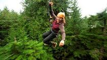 Ketchikan Shore Excursion: Rainforest Canopy Ropes and Zipline Park, ケチカン