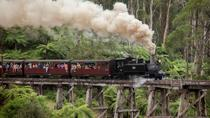 Combo de Melbourne: Great Ocean Road plus Sanctuaire de Healesville et Puffing Billy et Melbourne ...