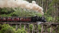 Melbourne Combo: Great Ocean Road plus Healesville Sanctuary and Puffing Billy and Melbourne ...