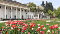Heidelberg and Baden-Baden Tour from Frankfurt, Frankfurt, Private Sightseeing Tours