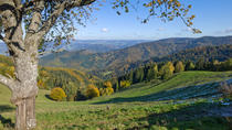 Private Tour: Strasbourg and Black Forest Day Trip from Frankfurt