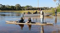 One Day Mokoro Safari, Maun, Day Trips