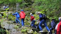 Skagway Shore Excursion: Chilkoot Trail Hike and Float Tour, Skagway, null