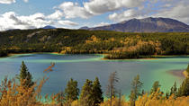 Skagway Shore Excursion: Full-Day Tour of the Yukon, Skagway, Ports of Call Tours