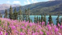 Skagway Shore Excursion: Half-Day Tour to the Yukon Border, Skagway, Bike & Mountain Bike Tours