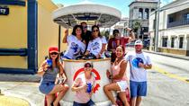 Grupo pequeno de 2 horas Party Bike Bar Crawl em Wynwood, Miami, Bar, Club & Pub Tours