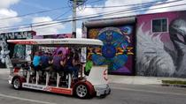 Wynwood Sightseeing Tour, Miami, Cultural Tours