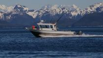Juneau Shore Excursion: Private Fishing Trip, Juneau