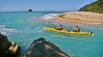 Abel Tasman National Park Kayak, Seals and Cruise, Nelson, Kayaking & Canoeing