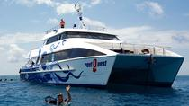 Great Barrier Reef Diving and Snorkeling Cruise from Cairns, Cairns & the Tropical North, ...