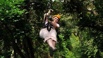 Roatan Shore Excursion: Zip 'n' Dip Canopy Tour, Roatan