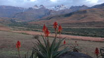 Drakensberg Mountain day Tour into Lesotho, Durban, Cultural Tours