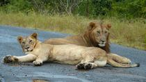 Durban Safari Tour - 3 day package, Durban, Cultural Tours