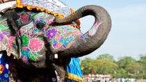Private Tour: Jaipur Sightseeing Including Jantar Mantar, Amber Fort and Elephant Ride, Jaipur