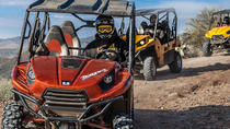 2 hour Arizona Desert Guided Tour on Teryx UTV, Phoenix