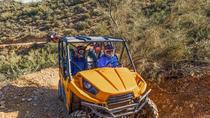 2-Hour Arizona Desert Guided Tour on Teryx UTV, Phoenix, 4WD, ATV & Off-Road Tours