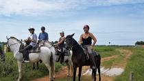 Horse Ride countryside trail rides with tuk tuk transfer, Siem Reap, Tuk Tuk Tours