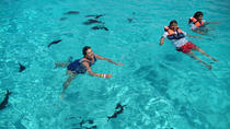 Caribbean Funday, Cancun, Day Cruises