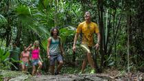 Coba Mayan Encounter, Cancun, 4WD, ATV & Off-Road Tours
