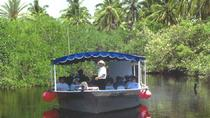 Mazatlan Shore Excursion: Estero Ecological Reserve Jungle Tour, Mazatlan, Bus & Minivan Tours