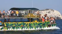 Stone Island & ATV, Mazatlan, 4WD, ATV & Off-Road Tours