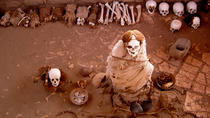 Half-Day Chauchilla Cementery Tour from Nazca, Ica, Half-day Tours