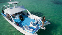 Paradise Found Our Private Full Day Charter to Saona Island from Punta Cana, Punta Cana, Other ...
