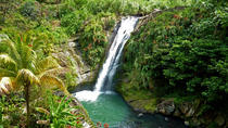 Full-Day Tour: Concord Waterfall, Chocolate Factory, Rum Distillery, Grand Etang, Grenada, Full-day ...