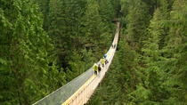 Deluxe Vancouver City and Great Outdoors Private Tour, Vancouver, Ziplines