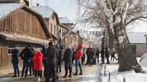 Auschwitz-Birkenau Guided Tour From Krakow, Krakow, Day Trips