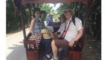 Classical Mekong delta (Private Tour), Ho Chi Minh City, Classical Music