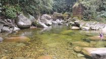 Full-Day Waterfalls and Nature Private Tour from Rio de Janeiro, Brazil, Rio de Janeiro, Private...