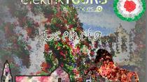 Esencia, Cordoba, Cultural Tours