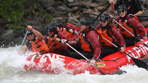 Full-Day Whitewater Rafting on Kicking Horse River, Kootenay Rockies, White Water Rafting