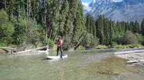 Tour de Paddleboard de Wapta Falls de 5 horas, Golden, Remo sobre tabla de pie