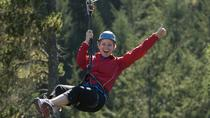 Small-Group Zipline Adventure, Victoria, Ziplines