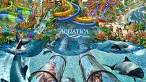 Miami to Orlando Aquatica Theme Park Round-Trip, Miami, Bus Services