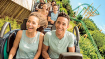 Round-trip Theme Park Transportation from Miami to Orlando, Miami, Dining Experiences