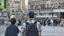 Private Insider Introduction to Tokyo, Tokyo, Private Sightseeing Tours